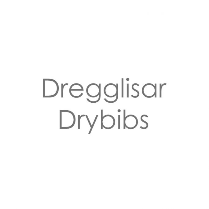 Dregglisar Drybibs